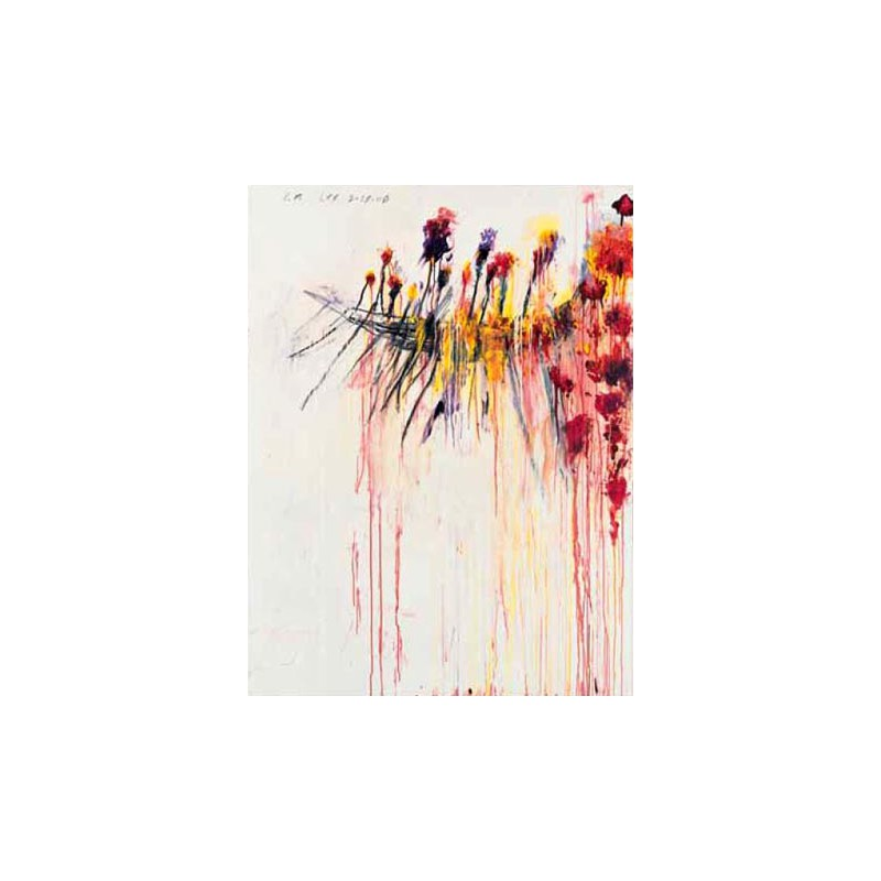 CY TWOMBLY catalogue raisonne of painting VOL.1 1948-60