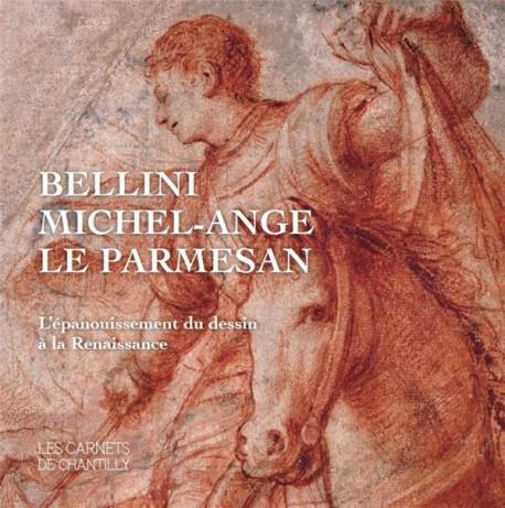 Bellini, Michel-Ange, Le Parmesan. L'épanouissement du dessin à la Renaissance