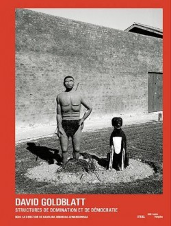 David Goldblatt Structures. Domination et démocratie