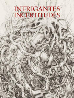 Catalogue Intrigantes incertitudes