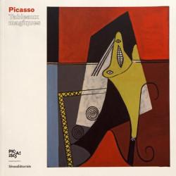 Album Picasso, tableaux magiques