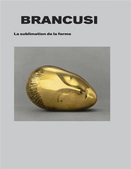 Brancusi - La sublimation de la forme