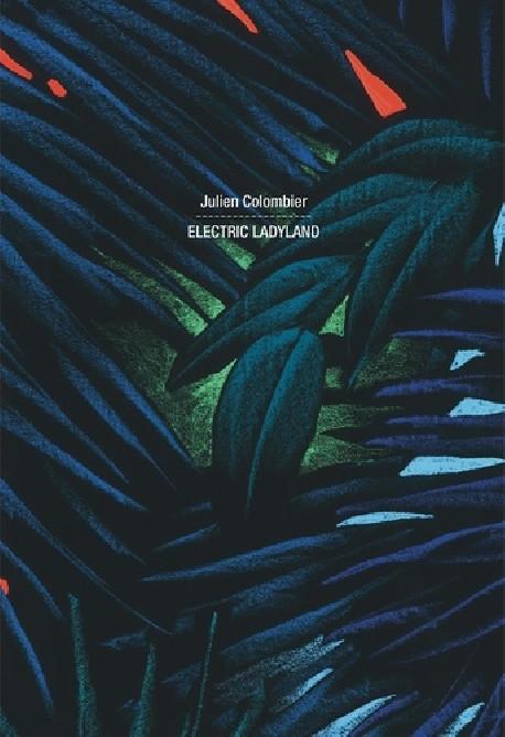 Julien Colombier - Electric Ladyland