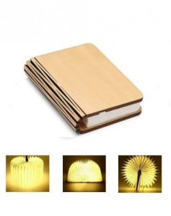 Luminous Book - Medium Size