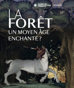 La forêt. Un Moyen Âge enchanté ?