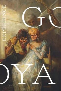 Expérience Goya - Palais des Beaux-Arts de Lille