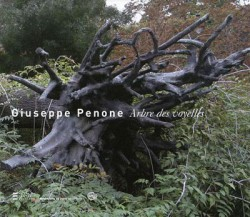 Giuseppe penone, l'arbre des voyelles