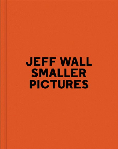 Jeff Wall, Smaller Pictures