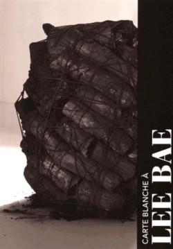 Carte blanche à Lee Bae, musée Guimet
