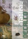 Art pour enfant : Tableau décalco de L'Arche de Noé, de Aurelio Luini