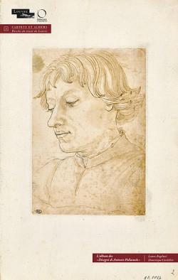 L'album des Disegni di Antonio Pallaiuolo