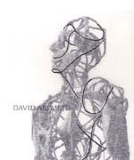 david-c.jpg
